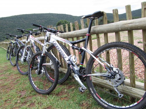 Mountain biking MTB