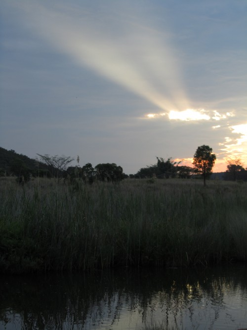 Waterberg sunset