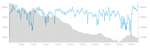 The race profile. Downhill all the way home.