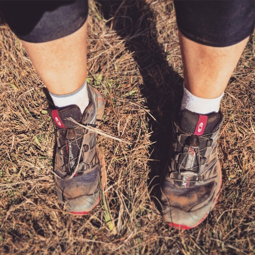 Dusty trail running shoes